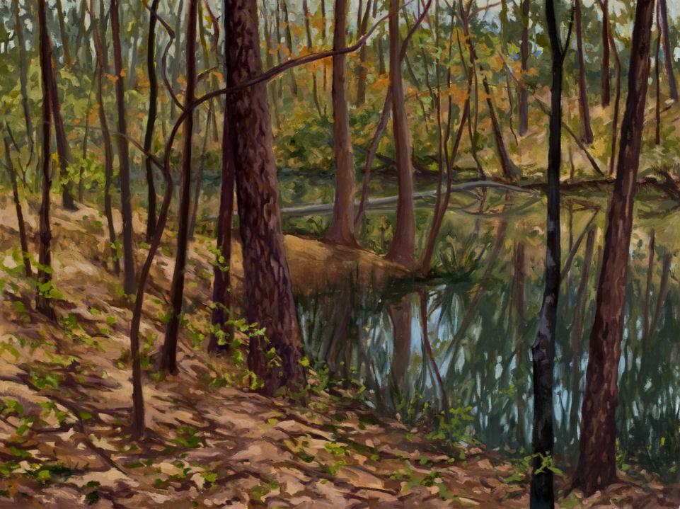 Pond Easter '08