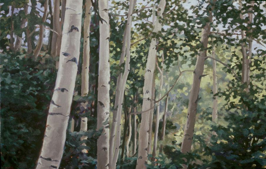 Taos Aspen 1