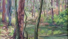 LBS Pond GP Pine