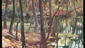 LBS Pond December - March