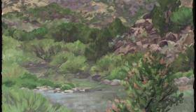 Rio Grande 10