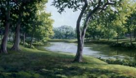 Summer at Creek